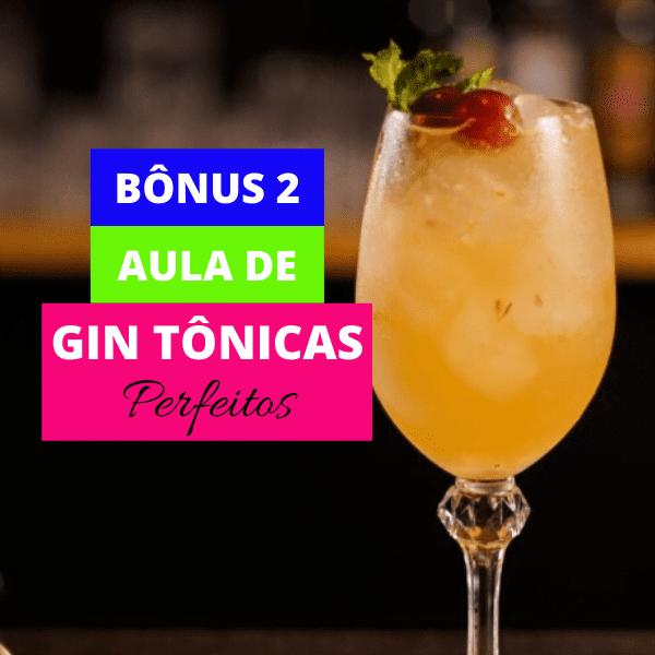 Aula de Gin Tônicas Perfeitos