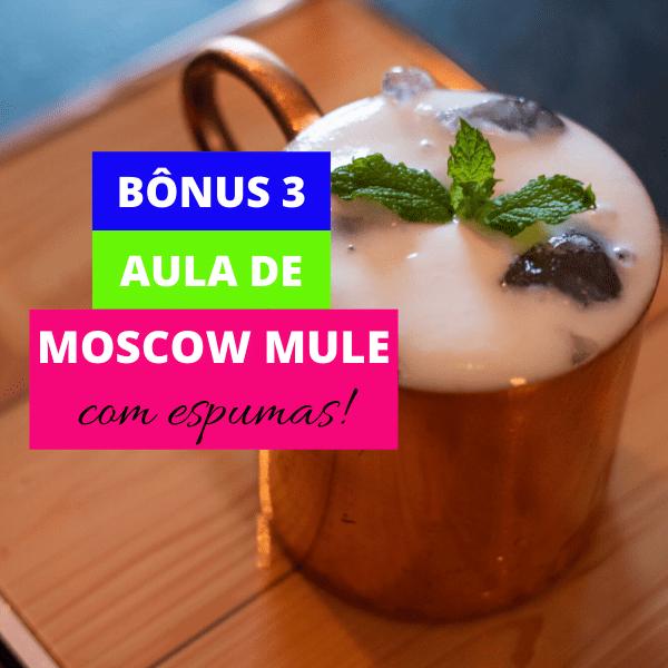 Aula de Moscow Mule com Espumas