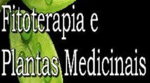 Curso Terapeuta em Fitoterapia e Plantas Medicinais