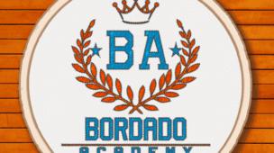 Bordado Academy - Livre e Ponto Cruz