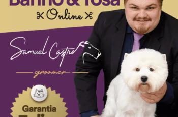 Curso Banho e Tosa Online Samuel Castro