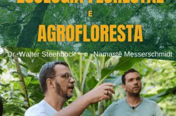 Ecologia Florestal e Agrofloresta