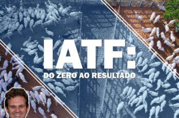 IATF do Zero ao Resultado